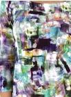 6791 Renoir Top